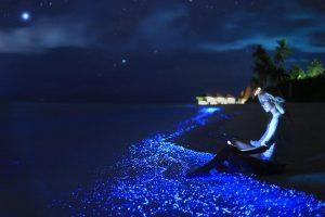 Pulau Vaadhoo, Maldives.