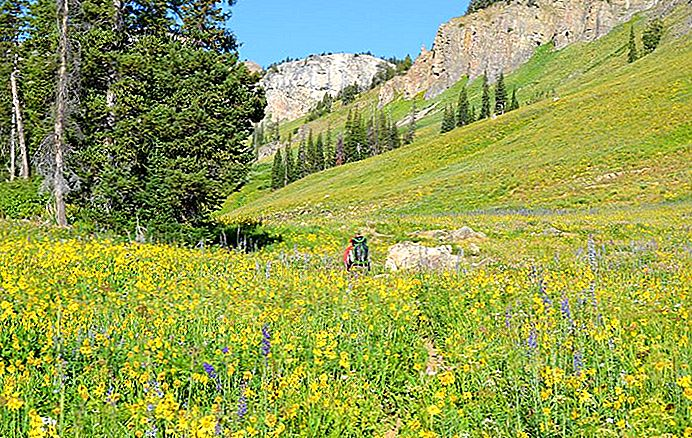 Beberapa Hal Cara Untuk Menjelajahi Lembah Teton